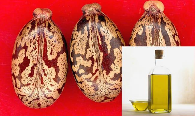 aceite de ricino mercadona